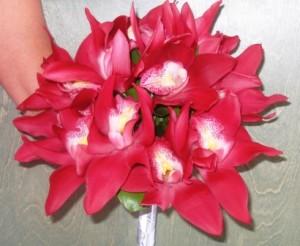 burgandy cymbid orchid