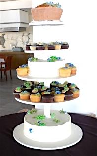 Cake, cupcakes & edible succulents